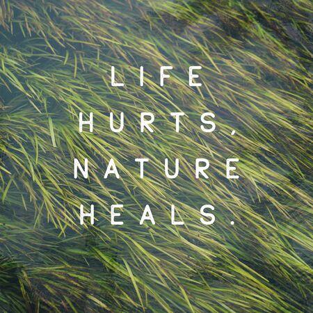 "Inspirational quote ""Life Hurts, Nature Heals""."