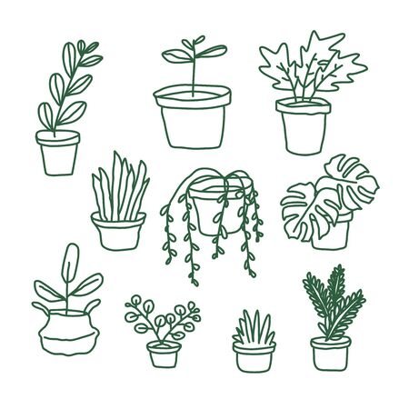 Set of house plants and flower pots. hand drawn doodle plants.