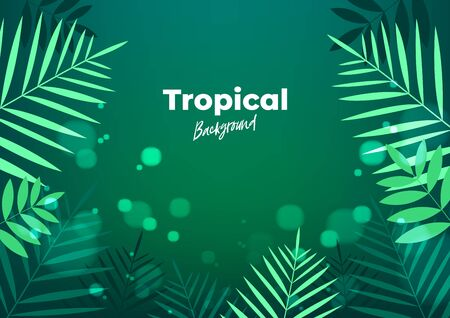 Summer night tropical background for banner or flyer with dark green palm leaves.