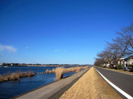 prefecture: Ibaraki Prefecture Tsuchiura city Kasumigaura