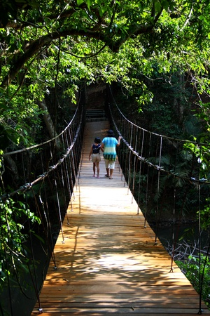 rope bridge: women and children walking on rope bridge in forest national park, Thailand