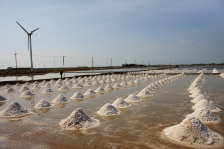 pile of salt in the salt pan at rural area of Thailand photo