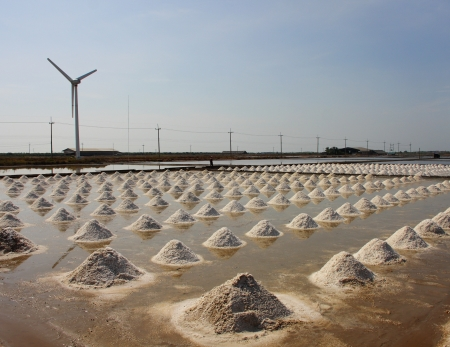 pile of salt in the salt pan at rural area of Thailand Stock Photo - 13825180