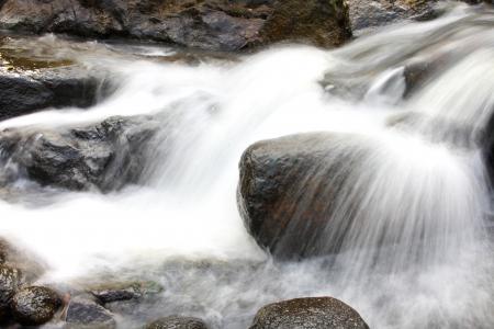 cours d eau: cours d'eau dans la for�t de la Tha�lande.