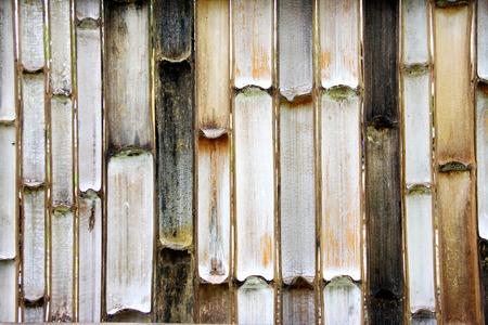 bamboo wall, background photo