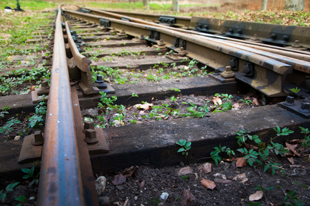 railway track: railway track to the forest