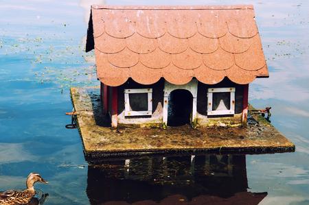 teeny: Lovely house for ducks Stock Photo
