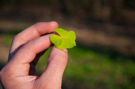 fourleaf: Four-leaf clover in hand