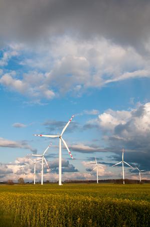 wind force wheel: Wind turbines on the field