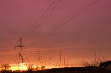torres el�ctricas: Hermosa puesta de sol sobre los �rboles y postes