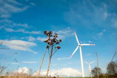 wind force wheel: Blurred wind turbines on the field