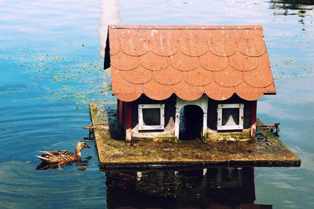 bonny: Lovely house for ducks Stock Photo