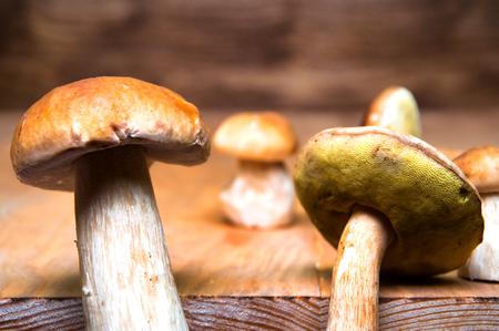 mushroom picking: Mushrooms boletus on wooden table Stock Photo