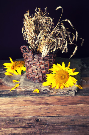 wicket: Cereal ears in wicket basket and sunflower Stock Photo