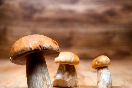 Mushrooms boletus on wooden table Stock Photo