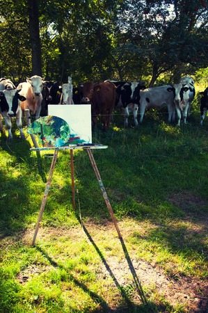 Young bulls pose for the painting in the open air Stock Photo