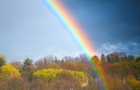 Rainbow over the forest in autumn