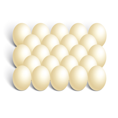 testicle: realistic chicken eggs on white background Illustration