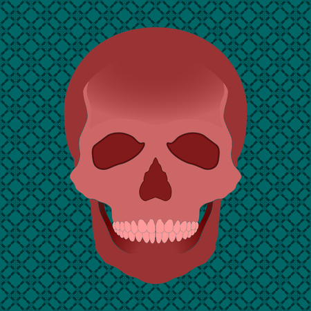 eye sockets: Vector red skull illustration on a pattern background Illustration