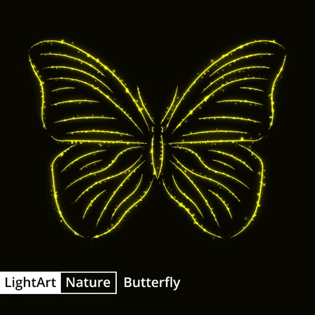 fantasy butterfly: Butterfly silhouette of yellow lights on black background