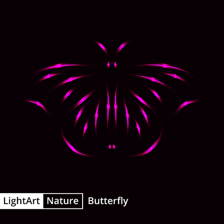pink and black: Butterfly silhouette of pink lights on black background Illustration