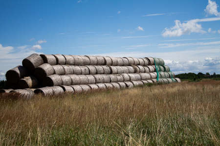 A lot of hay rolls stacked as an elongated pyramid on a meadow.