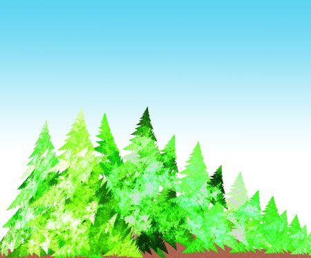 forest illustration illustration