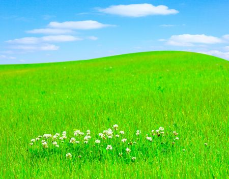 Heavenly view: clover meadow and a hill on the cloudscape horizon photo
