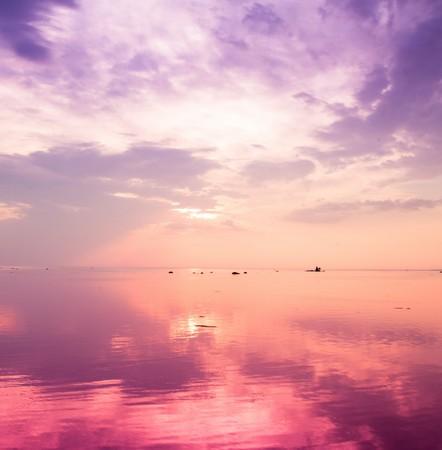 vague: Vague Pink Sunset