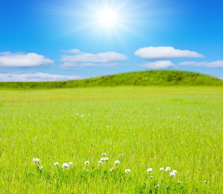 sunny hills of forever Stock Photo - 7951625