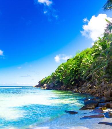 Panorama Summertime Shore  版權商用圖片