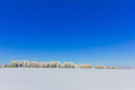 A Symphony of Cold Stock Photo - 9828168