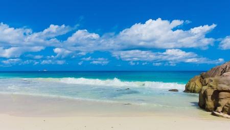 Island Getaway Giant  photo