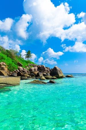Beach Ocean Scene  photo