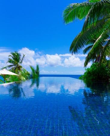 Sea Pool Palms  photo