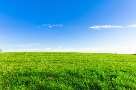 Wide Green Fairway  Stock Photo