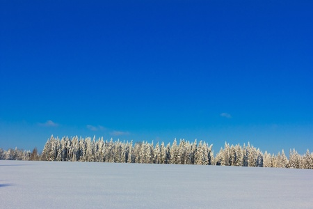 Frosty Sunny Day is in the Mountains  photo