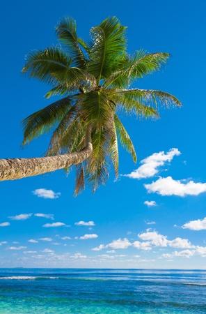 overhanging: Overhanging Sea Getaway  Stock Photo