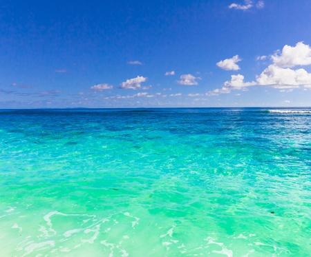 Summer Sea Wallpaper  photo