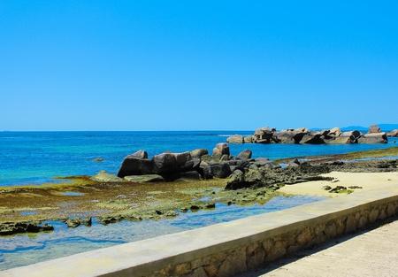 Tranquility Palms Sea  photo