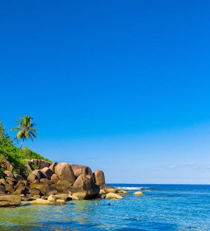 Ocean Paradise Exotic  photo