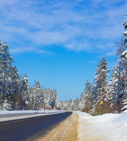 Forever Winter! Stock Photo - 10606000