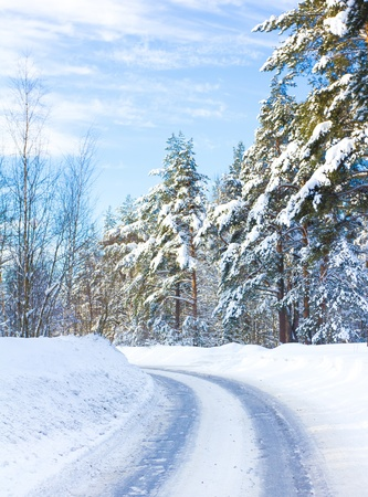 Joyful Happy Winter  Stock Photo