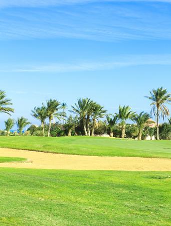 horizon over land: Golf Landscape Under Sun