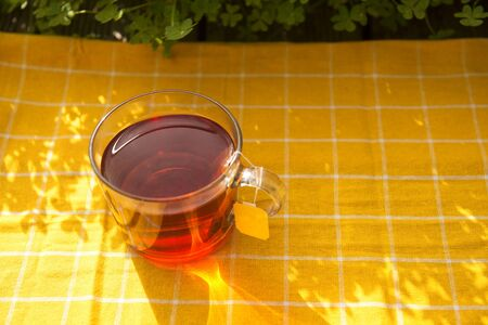 Glass transparent cup of black tea and dry tea in bags on the old wooden background.