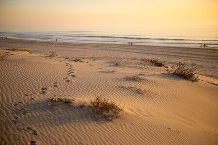 Sand dunes against the sunset light on the beach in Portugal.