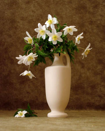 white flowers in vase over brown background  photo