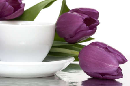 restraint: white cup of coffee with violet tulips