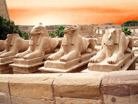 ancient statues in a Egypt                                 photo