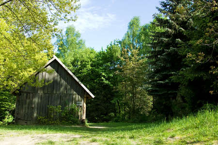 rural log-house in the forest  photo